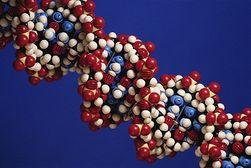Алкоголь разрушает ДНК и вызывает рак - ученые
