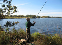 Рыбалка в России останется бесплатной