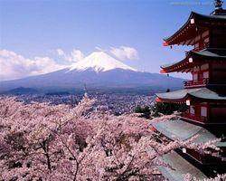 Капитальные затраты деловых кругов  Японии  во втором квартале выросли на 9.8 %