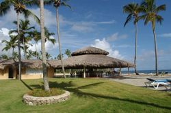 ТОП Яндекс агентств недвижимости Доминиканы: «Адвекс» и «Апекс» лидируют в майском рейтинге