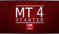 МТ 4 Starter
