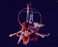 В цирке Одессы акробатка упала из-под купола. Обсуждения в Одноклассники.ру
