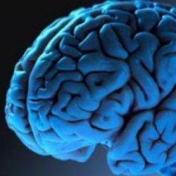 Ученые представили исследование интеллектуальных способностей с уровнем религиозности