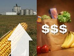Рост цен на продовольствие и замедление экономического роста