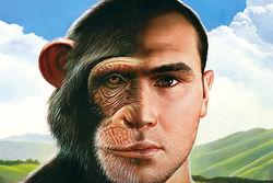 Ученые наконец-то нашли ген, отличающий человека от обезьян
