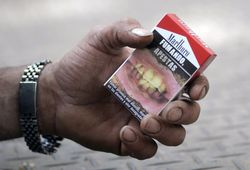 Австралия запретила табачные бренды. ТОП фото пачек сигарет страшилок
