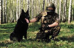 Ради списанных со службы собак ветеран ФСБ продал квартиру под Москвой