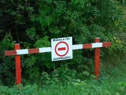 Синоптики предупреждают о чрезвычайной пожарной опасности в Украине, - выводы