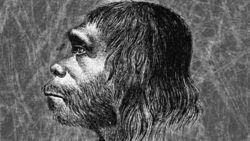 Удар по теории Дарвина: почему современный человек выжил, а неандерталец нет