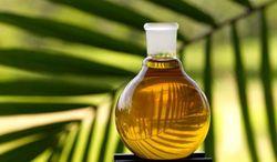 Мировые биржи опять фиксируют рост стоимости пальмового масла