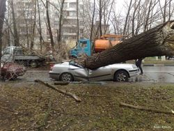 Ураган парализовал движение в Одессе. ТОП последствий стихии
