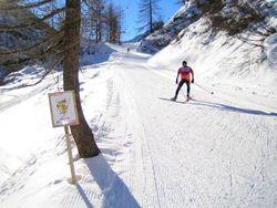 В Барнауле лыжные базы готовятся принимать любителей активно отдохнуть