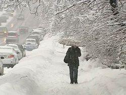 Снегопад вынудил власти Курска ввести режим чрезвычайной ситуации
