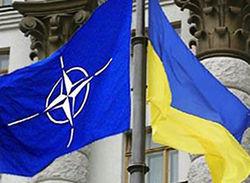 Теперь украинцы знают, для чего страна сотрудничает с НАТО