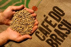Аналитические прогнозы сводятся к одному - мировое производство кофе пойдёт на спад