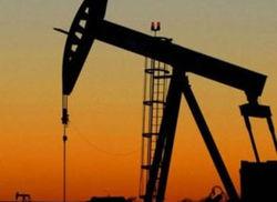 На Полтавщине открыто новое месторождение нефти – Нафтогаз Украины