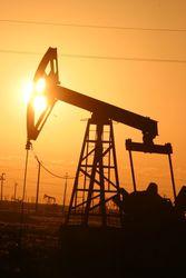 Tethys планирует начать освоение узбекского нефтяного месторождения