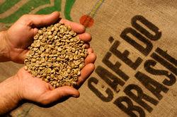 Рейтинг PR популярности кофе в России: Nescafe – снова лидер