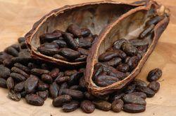 Мировой рынок ожидает дефицит какао-бобов