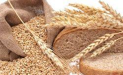 Марокко ожидает увеличение импорта пшеницы