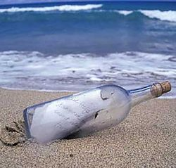Бутылка с письмом 28 лет плыла из Канады в Хорватию