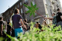 Демонстранты в центре Варшавы требовали легализовать марихуану