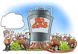 Украинский агрохолдинг будет экспортировать в Европу биогаз