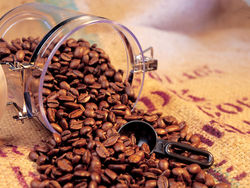 Упала цена на вьетнамский кофе «Робуста»