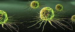 """""""Наномедуза"""" вычислит и уничтожит раковые клетки"""