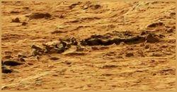 Чей скелет нашел марсоход Curiosity? ТОП сюрпризов Красной планеты