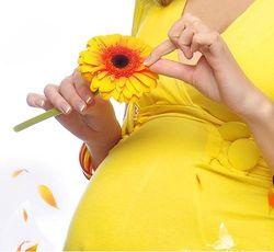 В Украине бизнес вовлекает беременных в мошеннические схемы