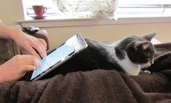 Новый iPad уже в Украине