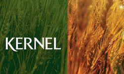 Fitch: агрохолдинги Кернел и Мрия выиграют от роста цен на зерно
