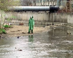 Воды московской реки отравлены фенолом и формальдегидом