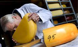 Роспотребнадзор проинспектирует двух сыроделов Украины