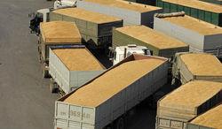 25 тыс. тонн российской пшеницы