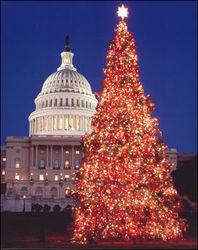 После рождественских каникул для завершения «бюджетных переговоров» в Вашингтон вернётся Обама
