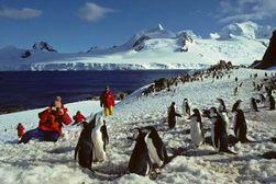 Открылся новый сезон экспедиций в Антарктиде