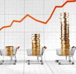 В текущем году инфляция в Беларуси достигнет 24,6 процентов