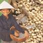 Объём импортированной в Китай сои достигнет 60 млн. тонн