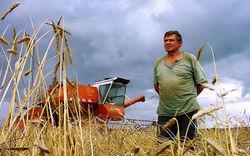 В Азербайджане призывают увеличить субсидирование аграриев