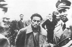 СМИ: Сын Сталина Яков был дезертиром и антисемитом – мнения в Facebook