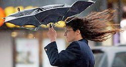 Погода: в Украине объявили штормовое предупреждение