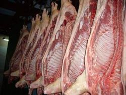 Отчеты USDA: цены на рынке свинины вырастут