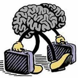 Чем грозит Украине «утечка мозгов»?