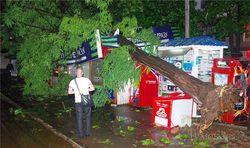 Одесса возмущена бездействием властей после урагана
