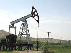 Сколько потратят на поиск нефти в Узбекистане?