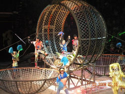 Артист цирка - самая опасная профессия шоу-бизнеса