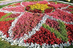 Алматы станет «городом цветов»