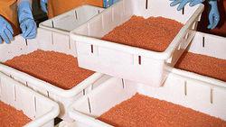 Силовики изъяли почти 400 кг красной икры